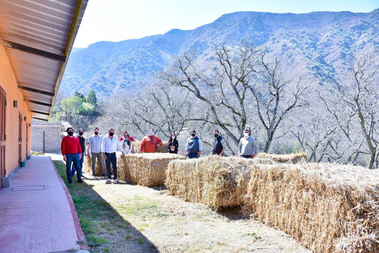Asistencia a productores ganaderos III